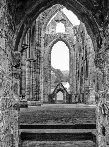 arches in architecture